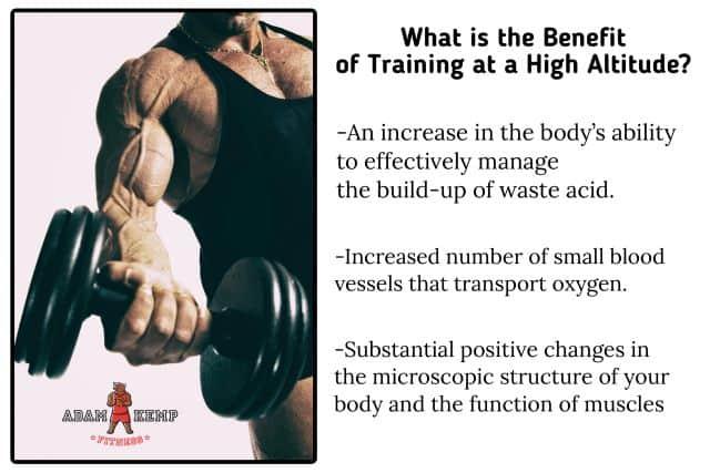 Training Mask Benefits
